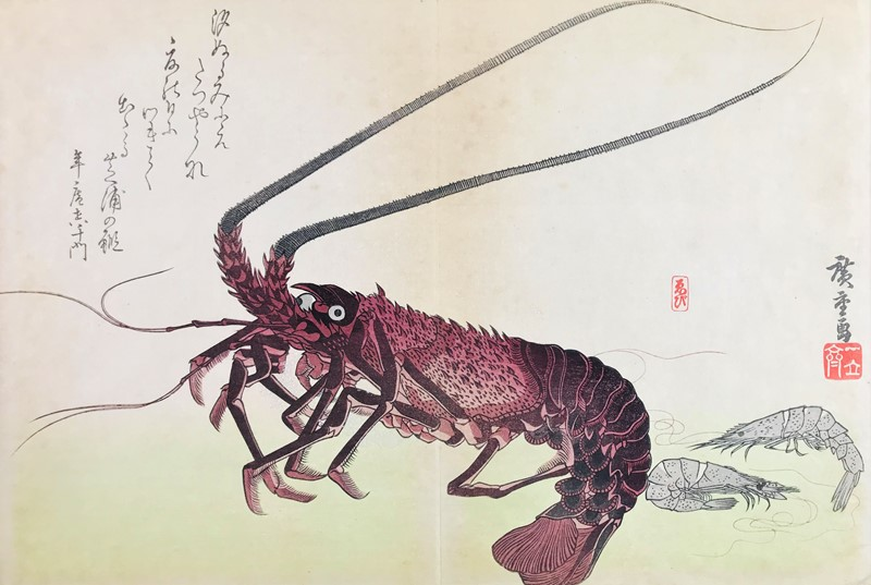 Japanese Watercolor. HIROSHIGE. Lobster and prawns.  - Auction RARE BOOKS, ATLASES,  [..]